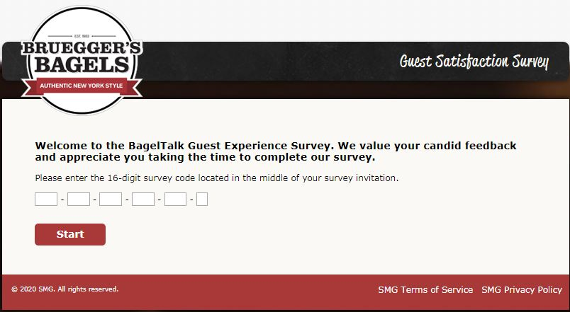 brueggers survey homepage